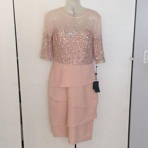 Adrianna Papell Blush Bead Bodice dress Size 6